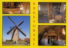 RIJKEVORSEL (Antw.) - Molen/moulin - De Stenen Bergmolen (combinatiekaart Interieur En Exterieur) - Rijkevorsel