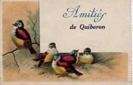 QUIBERON Amitiés De Quiberon  (Voir Scans Recto Et Verso) - Quiberon