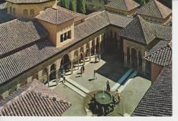 (GRD487) GRANADA. ALHAMBRA. PATIO DE LOS LEONES - Granada