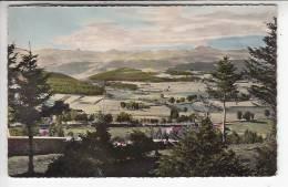 CEVENNES Haute Loire  43 - Vues Du Mont Chiniac ( Menzenc Et Gerbier ) - Jolie CPSM Dentelée Colorisée PF (1955) - France
