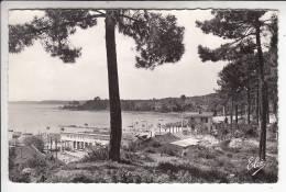 CAZAUX 33 - Les Bords Du Lac ( Café Restaurant LE NAUTIC ) - CPSM Dentelée PF (1962) N° 8015 - Gironde - Frankreich