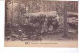 77 BARBIZON Foret L' Elephant Gorges Apremont - Barbizon
