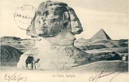 Le Caire - Sphynx - 1903 ( Voir Verso ) - Le Caire