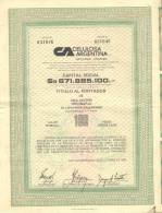 CELULOSA ARGENTINA 1 TITULO DE 1 ACCION ORDINARIA CAPITAN BERMUDEZ 1983 TITRE SHAREHOLDING PAPER CELULOSA Y PAPEL - Industry