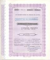 LOS PELUCHES S.C.A.  TITULO AL PORTADOR NOMINATIVO NO ENDOSABLE 1968 BUENOS AIRS ARGENTINA SOCIEDAD EN COMANDITA POR ACC - Actions & Titres