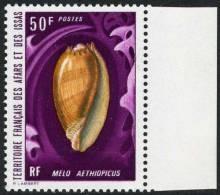 Afars & Issas 1972 Y&T 380 Bdf ** Margin MNH Coquillage Melo Aethiopicus - Unclassified