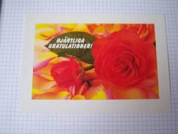 Entier Postal Deux Roses Rouges Et Pétales -Suède - Rosas
