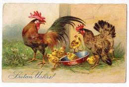 EASTER CHICKEN AMAG Nr. 2582 OLD POSTCARD - Easter