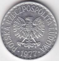 @Y@ Polen  1 Zlotty  1977    AUNC    (C359) - Polen