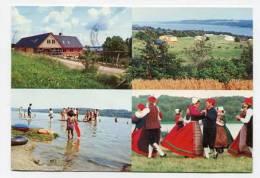 DENMARK - AK142882 Viborg - Vammen Camping - Danimarca