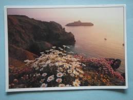 25773 PC: CORNWALL: Mullion Island. - Autres