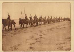 Planche Du Service Photographique Armée Belge Guerre 14-18 WW1 Militaire Chevaux - Altri