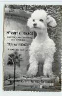 CAGNES SUR MER  -  Monsieur Ignace, Surveillant Général Des Studios,Casa-Bella,Photogaphe Avenue Des Collettes. - Cagnes-sur-Mer