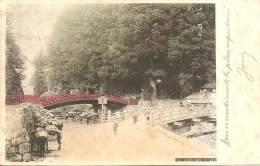 751 - SACRED BRIDGE AT NIKKO - 2 SCANS - Other