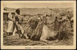 SOMALIA CAMMELLO CARICO DI LATTE 1933 - Somalia