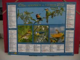 Les Oiseaux - Calendrier Almanach Du Facteur - Oller 2012 ( Tous Comme Neuf ) - Calendriers