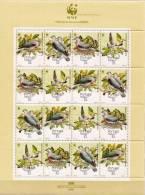 Madeira MNH Sheetlet - Columbiformes