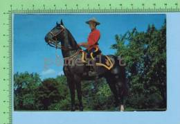 Canada Vancouver ( Royal Canadian Mounted Police ) Post Card Carte Postale - Police - Gendarmerie
