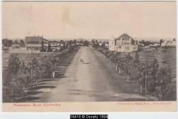 16418g KIMBERLEY - Monument Road - 1910 - Afrique Du Sud