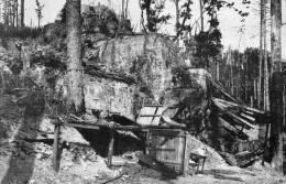 Viel Armand - Jaegerfels, Abri De Minenwerfer - France