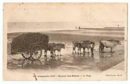 17 - Ronce Les Bains, La Plage Avec Attelage Boeufs 1911 - France
