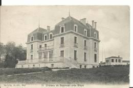 33 - GIRONDE - SEGONZAC Pres Blaye - Le Chateau - Francia