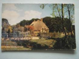 25807 PC: HAMPSHIRE: A New Forest Cottage.  (Postmark 1964). - Other