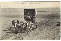 Carte Postale Ancienne Algérie - Laghouat. Le Courrier à La Prise D'eau - Attelage, Diligence, Postes - Laghouat