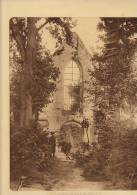 planche du service photographique arm�e belge guerre 14-18 WW1 eglise de saint jacques cappelle