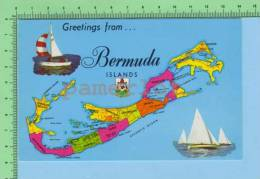 Greetings From (  Bermuda Island Armoirie ) West Indies Post Card Carte Postale - Cartes Géographiques