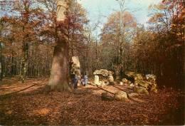 BOIS DE CHAVILLE    MEGALITHE - Dolmen & Menhirs