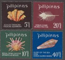 Sea Shell, Venus Comb, Royal Spiny Oyster, Cone Shell Marine Life MNH Philippines - Coquillages