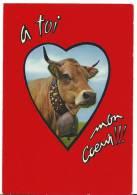 Humour :    A  Toi  Mon  Coeur  (  Vache ) - Humour