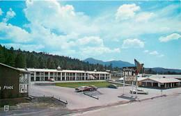 206781-Arizona, Williams, Thunderbird Inn, Route 66, 1950s Cars - Sonstige
