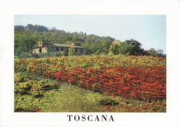 Toscana Italie Toscane Italia Jolie Paysage Vignoble Vigne Maison De Pierres Photographe Asciano - Italia