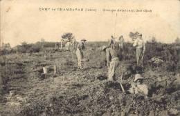 38 - Camp De CHAMBARAN - Isère - Groupe Déterrant Des Obus - Autres Communes