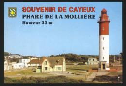 CAYEUX SUR MER - Le Phare De La Mollière - Cayeux Sur Mer