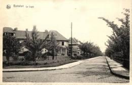 BELGIQUE - BRUXELLES - WATERMAEL-BOITSFORT - WATERMAAL-BOSVOORDE - Le Logis. - Watermaal-Bosvoorde - Watermael-Boitsfort