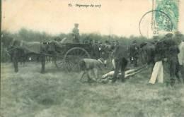 Chasse à Courre  Dépeçage Du Cerf - Hunting