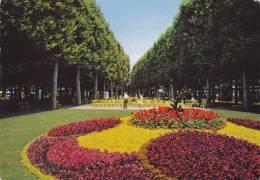VICHY 03, LE PARC DU CASINO - Vichy