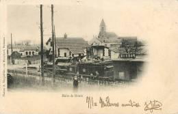 Briare : La Halte  Gare , Train - Briare
