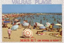 HERAULT Lot De 40 Cartes Postales Modernes Marseillan, Agde, Sète, Montpellier, Etc . - 5 - 99 Cartes
