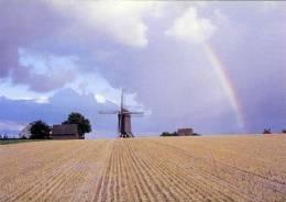 HUISE Bij Zingem (O.Vl.) - Molen/moulin - De Huisekoutermolen Met Regenboog En Agrarische Omgeving (1976). TOPKAART! - Zingem