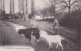 CPA 45   SOLOGNE, Une Gardeuse De Chèvres.. (animée) - Frankreich