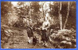 FRAUEN, HUNDE Beim Spazieren Im Wald, Seltene Alte Fotokarte, 1900-1920 - Berühmt Frauen