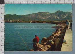 R8107 MARINA DI CARRARA IL PORTO PIEGHETTE VG - Carrara