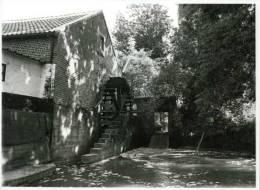 NIEUWERKERKEN - Binderveld (Limburg) - Molen/moulin - Echte Foto 18x24 Cm. Van De Elsbroekmolen In 1981 - Lieux