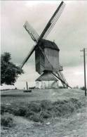 HERENTALS (Antw.) - Molen/moulin - De Watervoortmolen Kort Voor Zijn Verdwijning In 1940. Fraaie Opname ! (maxikaart) - Herentals