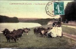 SARTROUVILLE BORDS DE LA SEINE - Sartrouville