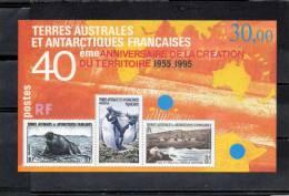 T.A.A.F. : 40ème Anniversaire Du Territoire - Animaux Des TAAF : Manchots Gorfous, Otarie, Eléphant De Mer- - Blocs-feuillets